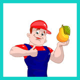 Farmer man showing thumbs up, quality fruit pear, cartoon on white background. Vector Stock Photos