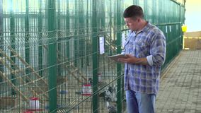 Farmer man using tablet computer, checking quality in poultry chicken farm, turkey farm, farming, poultry production. Farmer man using tablet computer, checking stock footage