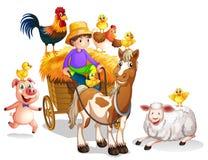 Farmer and many farm animals. Illustration Royalty Free Stock Photo