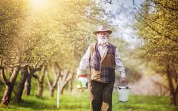Farmer with milk bottles Royalty Free Stock Image