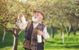 Farmer with milk bottles Stock Photography