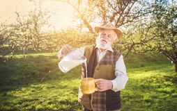 Farmer with milk jug Royalty Free Stock Photo
