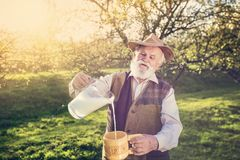 Farmer with milk jug Stock Photography