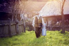 Farmer with milk kettle. Senior farmer carrying kettle full of milk Royalty Free Stock Image