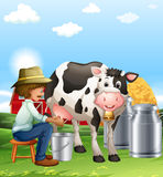 Farmer milking a cow at daytime Royalty Free Stock Photo