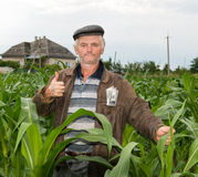 The farmer with money in the pocket Stock Image