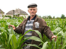 The farmer with money in the pocket Stock Photography