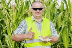 Farmer with money showing thumb up on corn field Stock Photo