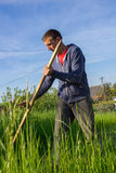 Farmer mowing grass Stock Images