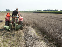 Farmer on old tractor mows wheat with plow behind Royalty Free Stock Image