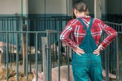 Free Farmer On Pig Raising And Breeding Farm Royalty Free Stock Photography - 149647757