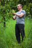 Farmer in the orchard Royalty Free Stock Images