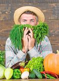 Farmer with organic vegetables. Just from garden. Grocery shop concept. Buy fresh homegrown vegetables. Excellent. Quality vegetables. Man with beard proud of royalty free stock photography