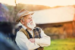 Farmer outside in nature Royalty Free Stock Photo