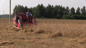Farmer peasant harvest wheat plants with small red combine stock video footage