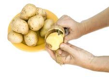 The farmer peels  raw potatoes Royalty Free Stock Photo