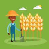 Farmer with pitchfork at wheat field. Stock Photos
