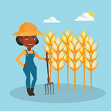 Farmer with pitchfork at wheat field. Royalty Free Stock Images