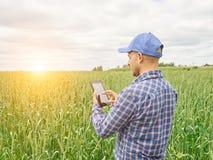 Farmer in a plaid shirt controlled his field. Stock Photos