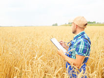 Farmer in a plaid shirt controlled his field and writing notes. Royalty Free Stock Photo