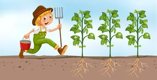 Farmer planting in the field Royalty Free Stock Images