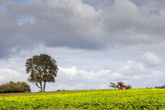 Farmer is ploughing his acres with the traktor Royalty Free Stock Image