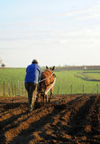 Farmer plowing the field, Spain Stock Images