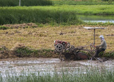 Farmer plows through muddy rice paddy with motorized machine. Stock Photos