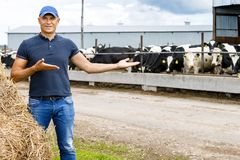Agriculture industry, farming, people and animal husbandry. Farmer portrait against background of herd of animal husbandry stock images
