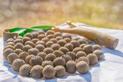 Farmer practice how to dry the soil ball bullet of slingshot wit Royalty Free Stock Photos