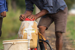 Farmer prepare chemical to sprayer tank before spray to green yo Stock Images