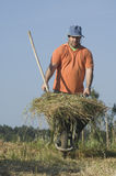Farmer pushing a wheelbarrow with a haystack Stock Photo