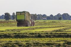 Farmer harvesting hay from a meadow. Farmer racking hay from a meadow with a tractor in Lower Saxony, Germany stock photo