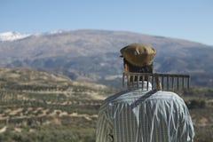 Farmer With Rake On Shoulder Against Mountain Stock Photos
