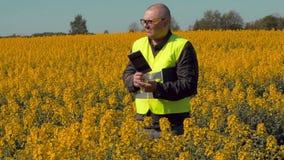 Farmer on rape field thinking stock footage