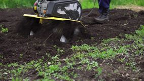 Farmer rips the ground with a cultivator. Close up of tines motorized cultivator rips ground.Farmer`s legs in black boots are buried in loose soil, preparation stock video