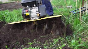 Farmer rips the ground with a cultivator. Close up of tines motorized cultivator rips ground.Farmer`s legs in black boots are buried in loose soil, preparation stock footage