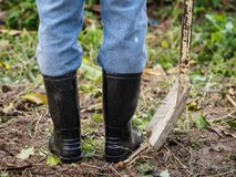 Farmer in rubber boots standing in the field. farm concept. royalty free stock images