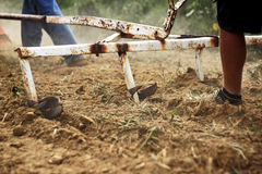 Farmer run after the plough Stock Photos