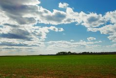 Farmer's dreams. An open farm field with puffy clouds royalty free stock photos
