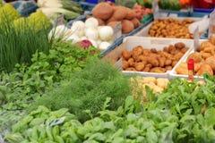 Farmer's market. Choice of fresh vegetables on farmer's market Royalty Free Stock Image