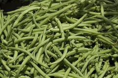 Farmer's Market Green Beans. Pile of Green Beans at a Farmer's Market stock photography