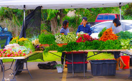 Farmer`s Market in Hawaii royalty free stock photography