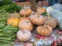 Farmer`s market- pumpkins for sale on stand. Pumpkins for sale on a stand at an outdoors farmer`s market Stock Images