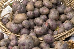 Farmer's Market Red Potatoes Stock Images