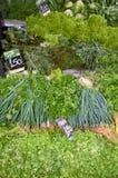 Farmer's market Royalty Free Stock Photography