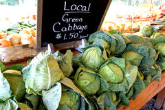Farmers Market Stand Selling Cabbage. Local green cabbage for sale at a farmers market stand Royalty Free Stock Photos