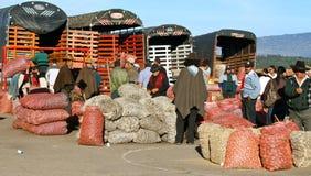 Farmer´s market, Villa de Leyva, Colombia. Sacks of different kinds of potatoes on Villa de Leyva´s saturday market Royalty Free Stock Photo