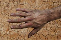 Farmer`s rough hand  on fertile soil Stock Image