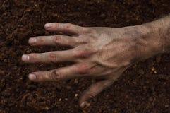 Farmer`s rough hand  on fertile soil Royalty Free Stock Images